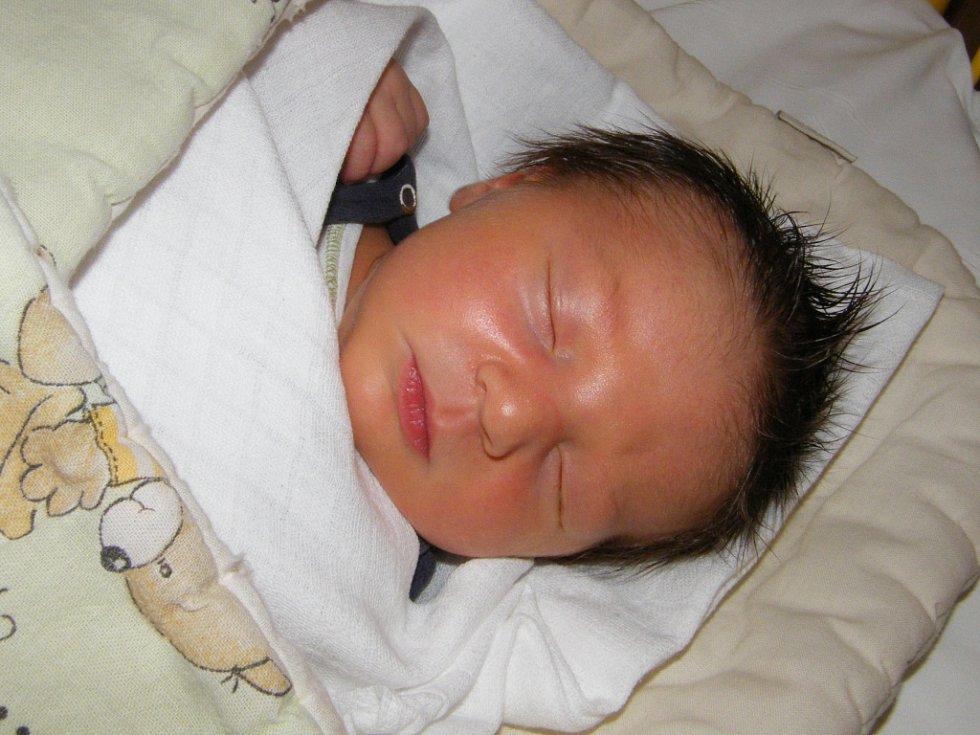 Jan Sebera  se v prachatické porodnici narodil 19. března 2012 ve 14.45 hodin, měřil  52 centimetry a vážil  3990 gramů. Rodiče Zdeňka a Jan Seberovi jsou z Prachatic.
