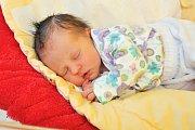 Tereza TVRDÍKOVÁ, Zahoří. Narodila se 14. listopadu v 18 hodin a 45 minut ve strakonické porodnici, vážila 2400 gramů. Má brášku Matěje (4 roky).Rodiče: Monika a Slávek.