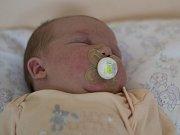 V pondělí 7. srpna v osm hodin večer se v prachatické porodnici narodila Štěpánka Šicnerová. Vážila 4200 gramů a 52 centimetrů. Rodiče Andrea a Lukáš Šicnerovi si druhorozenou dceru odvezou do Husince, kde netrpělivě čeká sestřička Madlenka (2 roky).