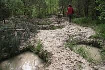 Pozemek Magdy Troubilové nedaleko Jankova proměnili kopáči vltavínů v měsíční krajinu nebezpečnou jim samotným a hlavně lidem z okolí.