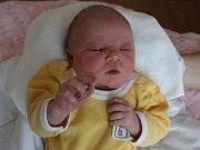 O tři a půl roku starší Luboš má od středy 29. listopadu malou sestřičku. Holčička se narodila v prachatické porodnici v 19.35 hodin, vážila 3640 gramů a dostala jméno Anežka Remiášová. Rodiče Jana Hrušková a Luboš Remiáš jsou z Prachatic.