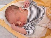 Ke čtyřleté holčičce Kristýnce přibyl do rodiny Šochmanových kluk. Dostal jméno  Pavel Šochman a narodil ve strakonické porodnici v pátek 26. ledna jedenáct minut po osmé hodině ráno. Vážil 3800 gramů. Rodině žije v Putkově.