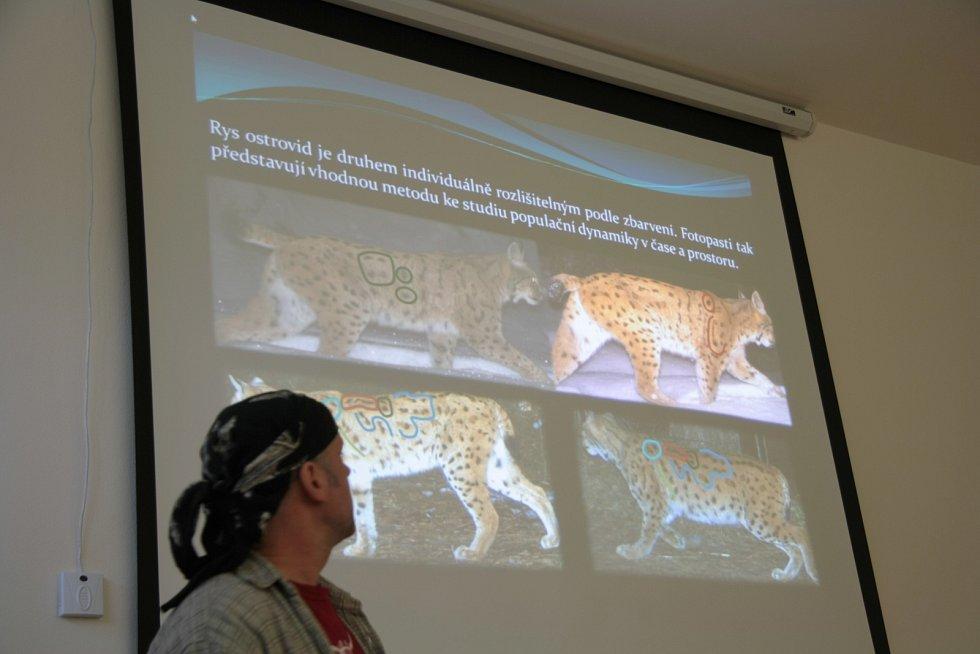 Snímky z fotopastí pomáhaly identifikovat jednotlivá zvířata.