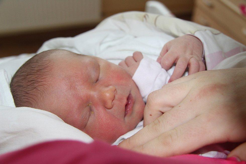 CHARLOTTA DEJMKOVÁ, NETOLICE. Narodila se ve středu 19. února v 10 hodin a 10 minut v prachatické porodnici. Vážila 3680 gramů. Má brášku Josefa (3 roky). Rodiče: Josef a Monika.