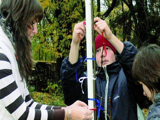 DALŠÍ LÍPA. Na sobotní slavnosti osmnáctiletých, která se konala v sobotu ve Vlachově Březí, zasadili noví občané města další lipový strom. Ten je nad kaplí Svatého Ducha již dvanáctý v řadě.
