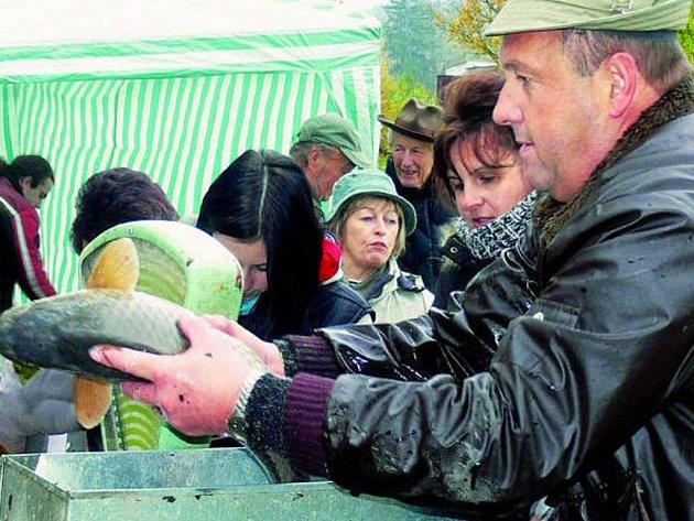 VELKÁ VÁHA. Ten, kdo si chtěl v sobotu při výlovu Dubského rybníka koupit kapra, musel zdolat velkou frontu.