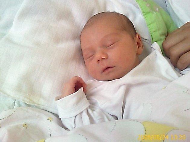 Nella Panni, Husinec, 21. 8. 2008 v 19.05 hodin, 2,90 kg a 49 cm