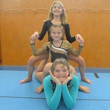 Vimperské gymnastky cvičily v Sezimově Ústí.