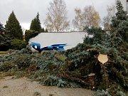 Vítr lámal stromy na Prachaticku i v samotných Prachaticích. Stříbrný smrk vyvrátil vítr v ulici SNP těsně vedla bývalé ubytovny.