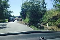 Nehoda dvou nákladních aut u Těšovic.