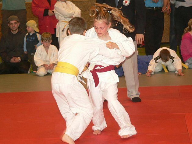 Mladí judisté měli turnaj v Prachaticích.