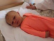 Nela Kubová se narodila v úterý 19. prosince 2017 ve 21 hodin a 33 minut rodičům Kamile Štauberové a Aleši Kubovi z Jámy u Lhenic v prachatické porodnici. Prvorozená dcera vážila 3300 gramů.
