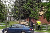 Manželé Stárkovi se pozastavili nad kácením stromů u autobusového nádraží.