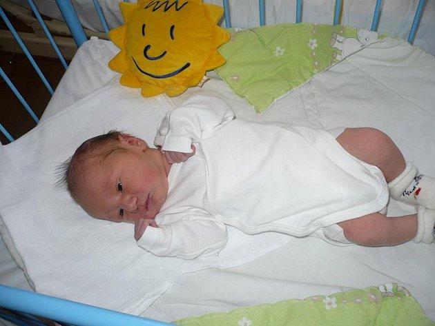 Rodiče malého Davida Hanuše z Horní Vltavice dostali pod stromeček ten nejkrásnější dárek. David, který váží 3,05 kilogramu a měří 50 centimetrů, se jim narodil na Štědrý den v 9.55 hodin.