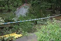 Bouře, která poškodila Štěpánčin park v Prachaticích, byla rychlejší, než plánovaná kontrola zdravotního stavu stromů v parku.