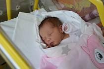 TEREZA ŠPÁNOVÁ, HRACHOLUSKY. Narodila se v pondělí 25. března ve 21 hodin a 14 minut v písecké porodnici. Vážila 3250 gramů. Měřila 48 centimetrů.Má brášku Dominika (2 roky). Rodiče: Jana a František Špánovi.