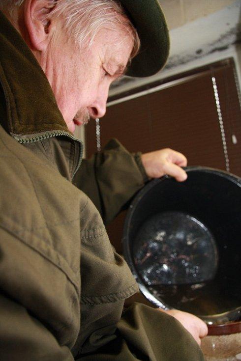V rybí líhni Národního parku Šumava v Borových Ladech skončil výtěr mníka jednovousého. O rozšíření této jediné treskovité ryby v našich řekách se stará vedoucí líhně Josef Šperl.
