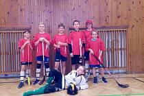 Malí sportovci z prachatické Vodňanky bojovali o bednu na florbalovém turnaji.