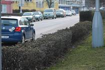 Zkrácení živého plotu ve Zvolenské ulici řidiči kvitují s povděkem.