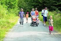 DÍRY UŽ VE VOZOVCE NEBUDOU. Pro pěší turisty i cyklisty bude cesta nově upravena už v září. k rozhledně i k lanovému parku na vrcholku Libína tak bude lepší přístup.