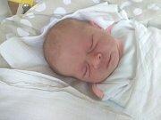 V neděli 22. dubna pět minut po čtvrté hodině ráno se v prachatické porodnici narodila Sabina Lachová.  Vážila 3040 gramů. Rodiče Věra Králová a Petr Lach žijí ve Čkyni, kde vychovávají také o tři a půl roku staršího syna Adámka.