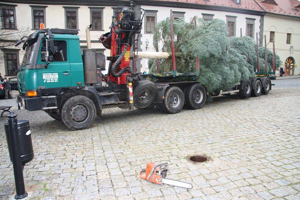 Vánoční strom je na místě.