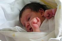 Rodiče Leničky dostali ten nejkrásnější dárek, když se Lenka Kadlecová ze Stach poprvé podívala na svět dne 10.8.2007 v 13.45 hodin.
