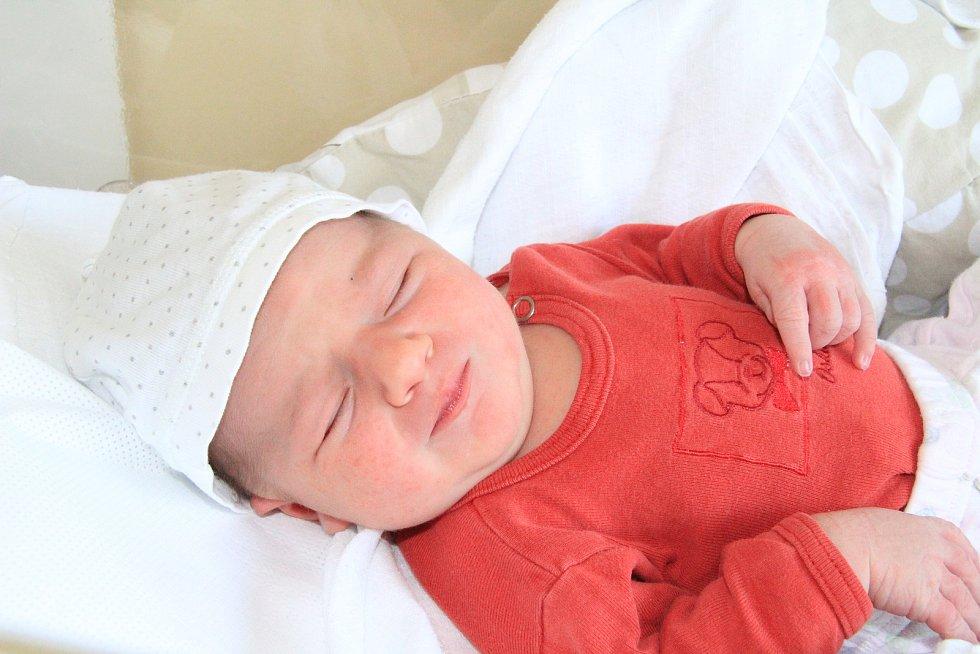ESTER ŠTĚPÁNKOVÁ, SLUNEČNÁ. Narodila se ve středu 12. června ve 12 hodin a 25 minut v prachatické porodnici. Vážila 4045 gramů. Má sourozence Davida (9), Deboru (5) a Rebeku (2,5 roku). Rodiče: Kateřina a Pavel.