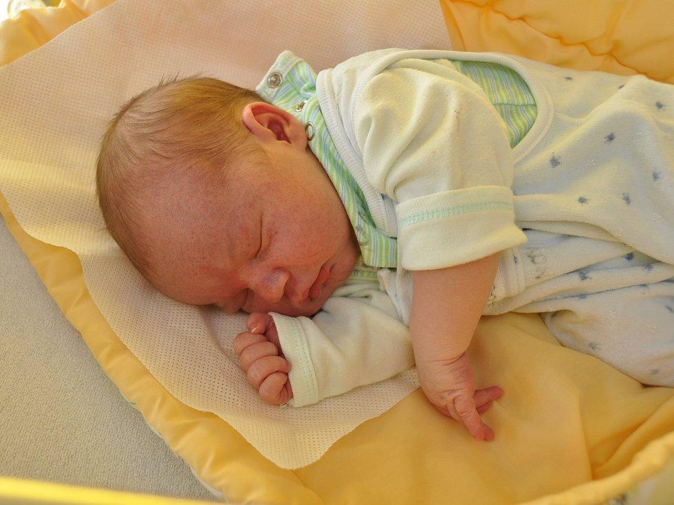 Ve čtvrtek 18. ledna se šestnáct minut před polednem ve strakonické porodnici narodil Václav Nový. Vážil 4350 gramů. Rodiče žijí v Prachaticích, kde se na malého brášku těšily také dvě starší sestry, devítiletá Jaruška a pětiletá Anička.