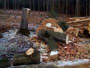 Poničená kaplička na křížové cestě u Lhenic.