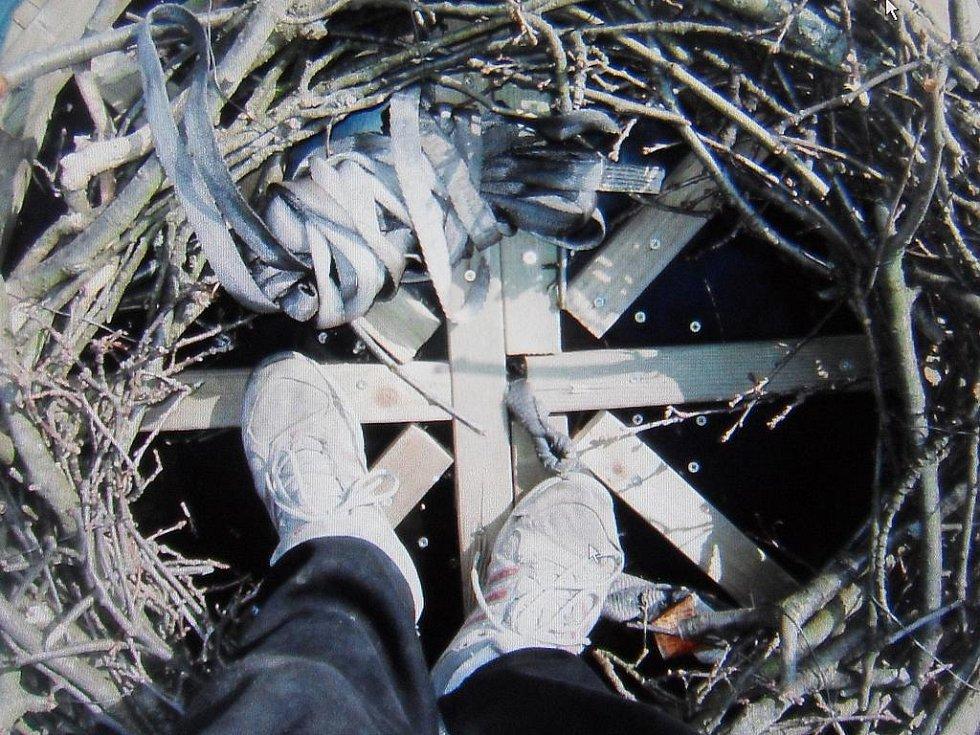 Hnízdění čápů na netolickém komíně. Ilustrační foto.