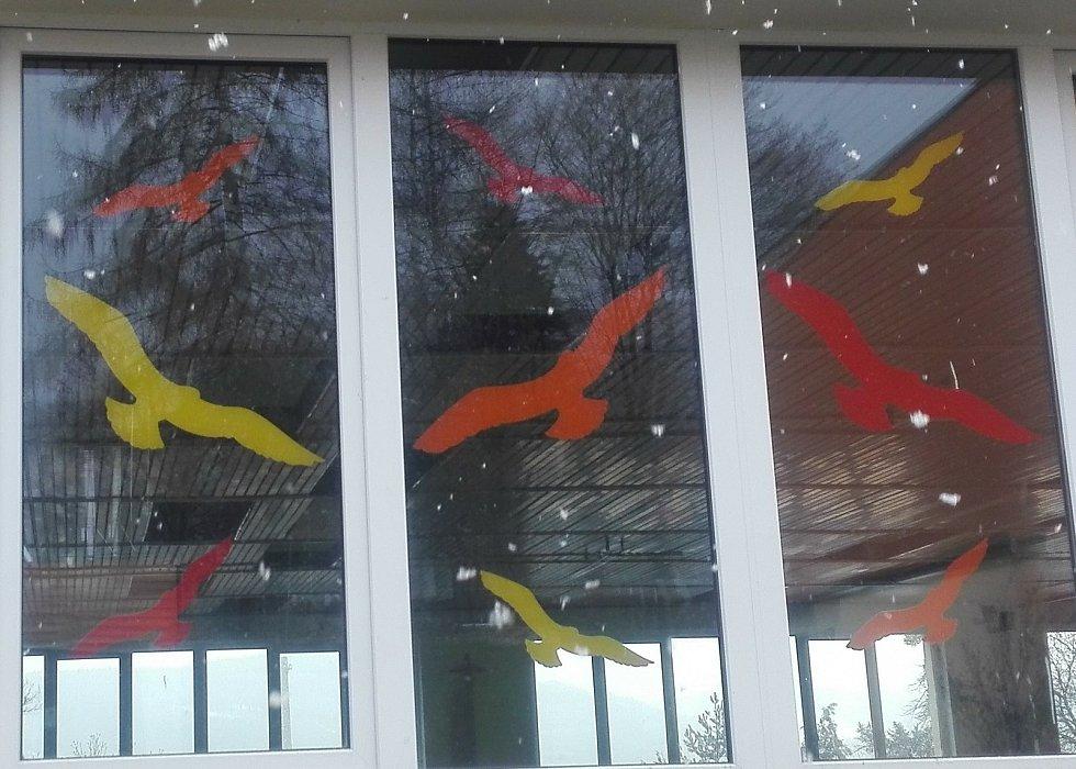 Na plotě Dřípatky zkuste zábavný kvíz na téma ptáci. Zapojte se i do soutěže a vyrobte či nakreslete obrázky na skleněné plochy, díky kterým ptáci do skla nenarazí.