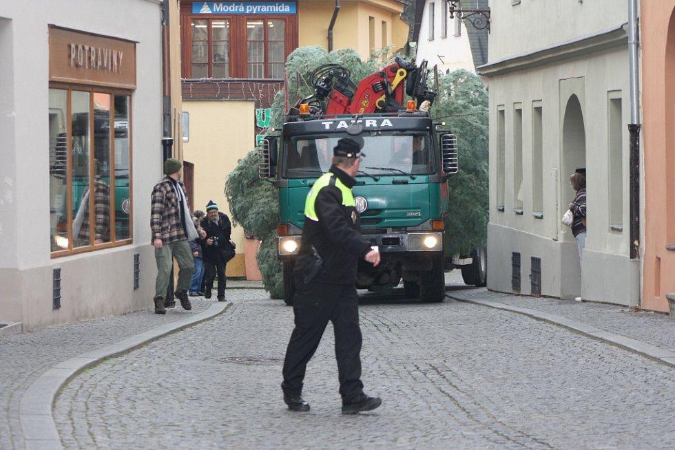 Zhruba po půl hodině už souprava s naloženým vánočním stromem vjíždí do centra města. Jedle je sice o něco vyšší, zato je štíhlá a ulicemi projede bez problémů.