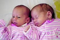 Hned dvojnásobnou radost má rodina z Horních Chrášťan nedaleko Lhenic. Dvě holčičky Lucii a Janu Růžkovy spojuje krásný datum narození 4.4.2011. Vlevo ležící Lucinka měřila 40 cm, vážila 1,61 kg a přišla na svět v 8.59 hodin, jen o minutu mladší je její s