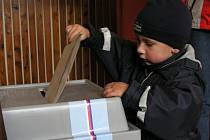 Volby v Horní Vltavici