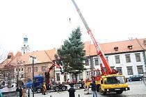 Instalace vánočního stromu na Velkém náměstí v Prachaticích.