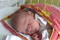 Aneta Zíková se v písecké porodnici narodila v pondělí 21. února pět minut po deváté hodině večerní. Vážila 3700 gramů a měřila 52 centimetrů. Rodiče si holčičku odvezou domů do Strunkovic nad Blanicí.