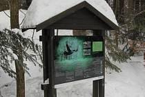 """Správa Chráněné krajinné oblasti Šumava a Přírodní park Horní Bavorský les spolupracují na osvětě veřejnosti při ochraně ohrožených druhů zvířat, například vzácného tetřeva hlušce. Projekt má název """"Přežít není vůbec jednoduché!"""""""