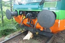 Na trati Kubova Huť - Horní Vltavice v sobotu vlak narazil do spadlé větve.