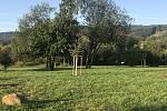 Místo, kde by mohl vzniknout komunitní park, vedle škvárového hřiště v Prachaticích.