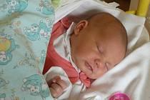 Natálie Preislerová se narodila v prachatické porodnici v pondělí 26. října ve 12.20 hodin. Vážila 3600 gramů a měřila 52 centimetrů. Doma ve Vodňanech na malou Natálii a maminku Helenu čeká tatínek Martin a bráška Jan (11 let).