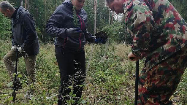 Dobrovolníci vysázeli stromy u Horní Chrášťan.