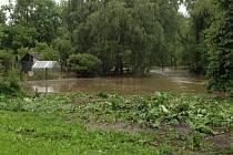 Netolický potok v pondělí dopoledne.