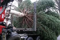 Ukotvení vánočního stromu na prachatickém Velkém náměstí.