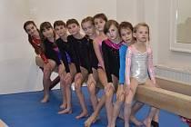 Gymnastky si vedly v silné konkurenci dobře.