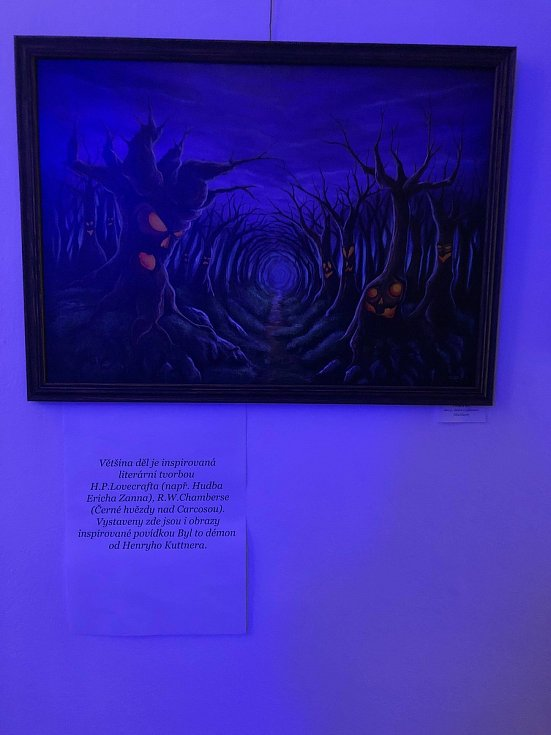 Vernisáž výstavy obrazů Pavla Pavelky ml. v Zimní zahradě MěÚ Prachatice.