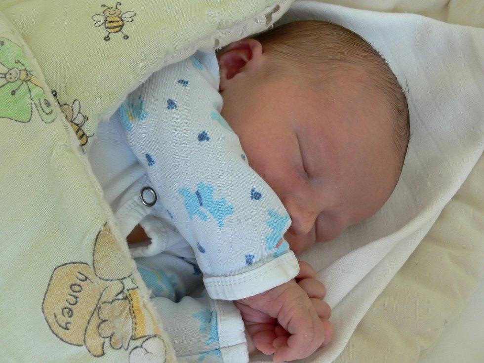 Veronika Nováková se v prachatické porodnici narodila ve čtvrtek 19. července v 22.50 hodin. Holčička při narození vážila 3600 gramů a měřila 48 centimetrů. Rodiče Jana Fenclová a Ondřej Novák jsou z Prachatic.