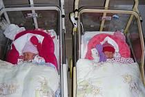 Maminka Drahomíra Staňková je z jednovaječných dvojčat a 31. ledna 2020 přivedla na svět dvojvaječná dvojčátka, Jasmínku a Kamilku. Tatínek Lukáš Staněk si manželku a holčičky odvezl domů do Únětic.