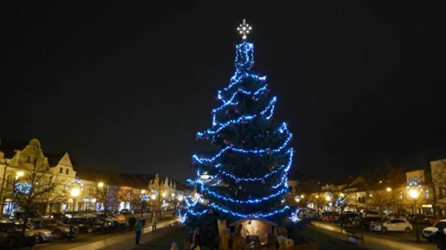 Rozsvícení vánočního stromu v Berouně.