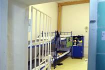 DO VĚZENÍ. Matčinu pohostinnost vyměnil násilník za pobyt v cele pro nebezpečné zločince.
